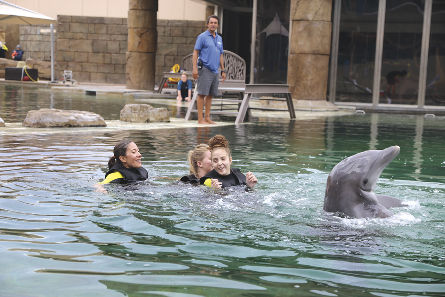 Sea STAR, Dolphinaris, Scottsdale, special needs