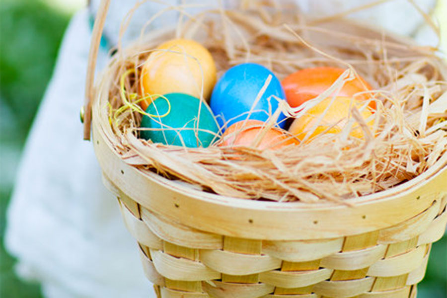 Schnepf Farms Easter