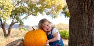 Mortimer Farms, pumpkin festival, corn maze