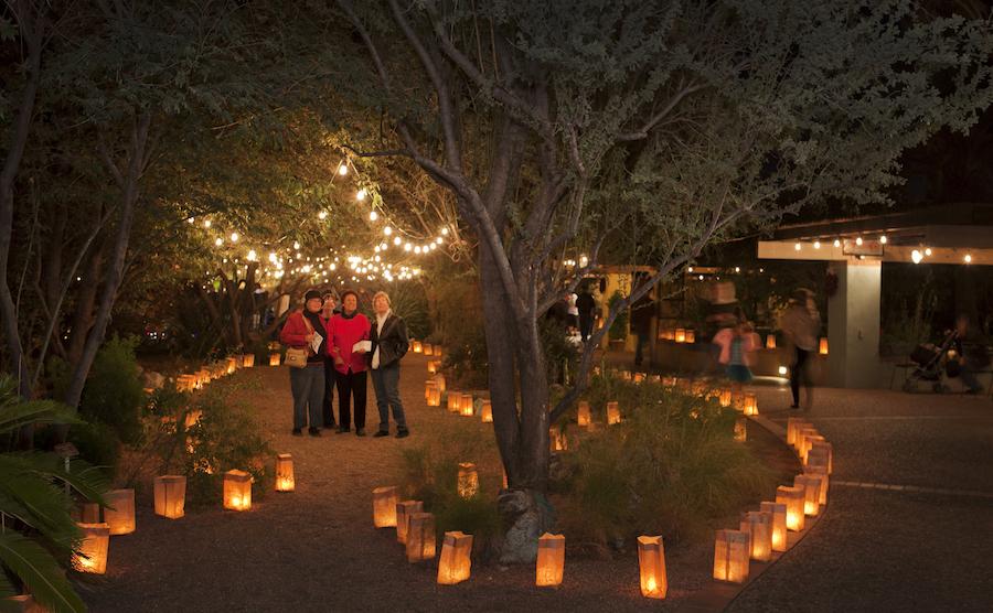 Tucson Botanical Gardens luminarias - Tucson Botanical Gardens Luminaria Night 2019