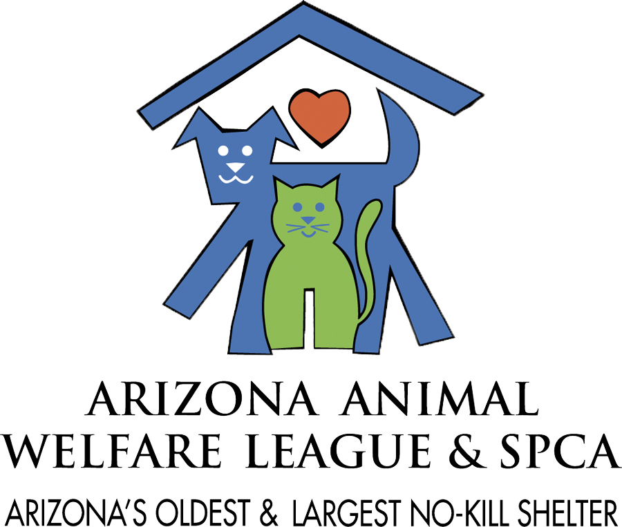 Arizona Animal Welfare League & SPCA, summer camp, summer camps, Phoenix, Arizona. animal care