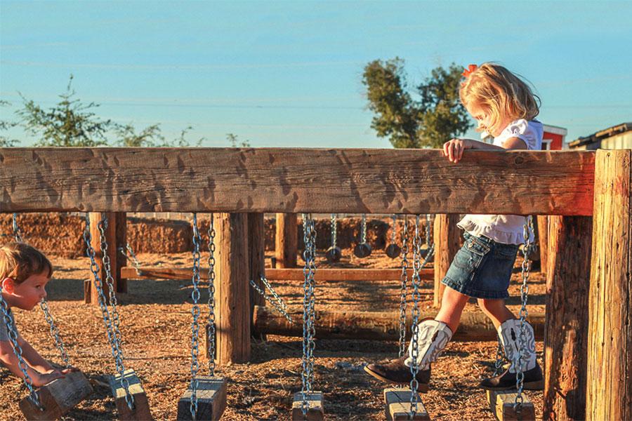 pumpkin patch, pumpkin patches, pumpkin festival, Arizona, kids, families