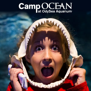 Camp Ocean at OdySea Aquarium, summer camp, kids, STEM, Arizona