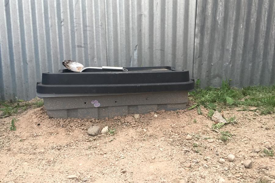 worms, composting, worm bin