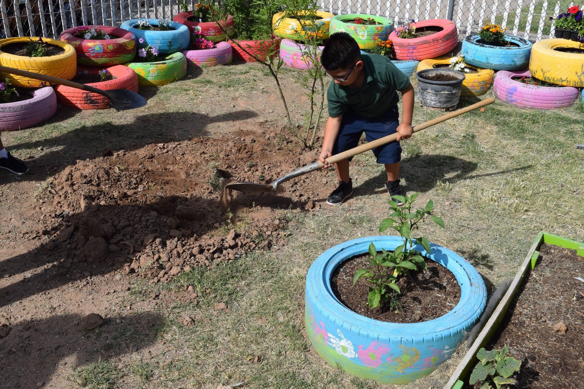 Cartwright Community Garden