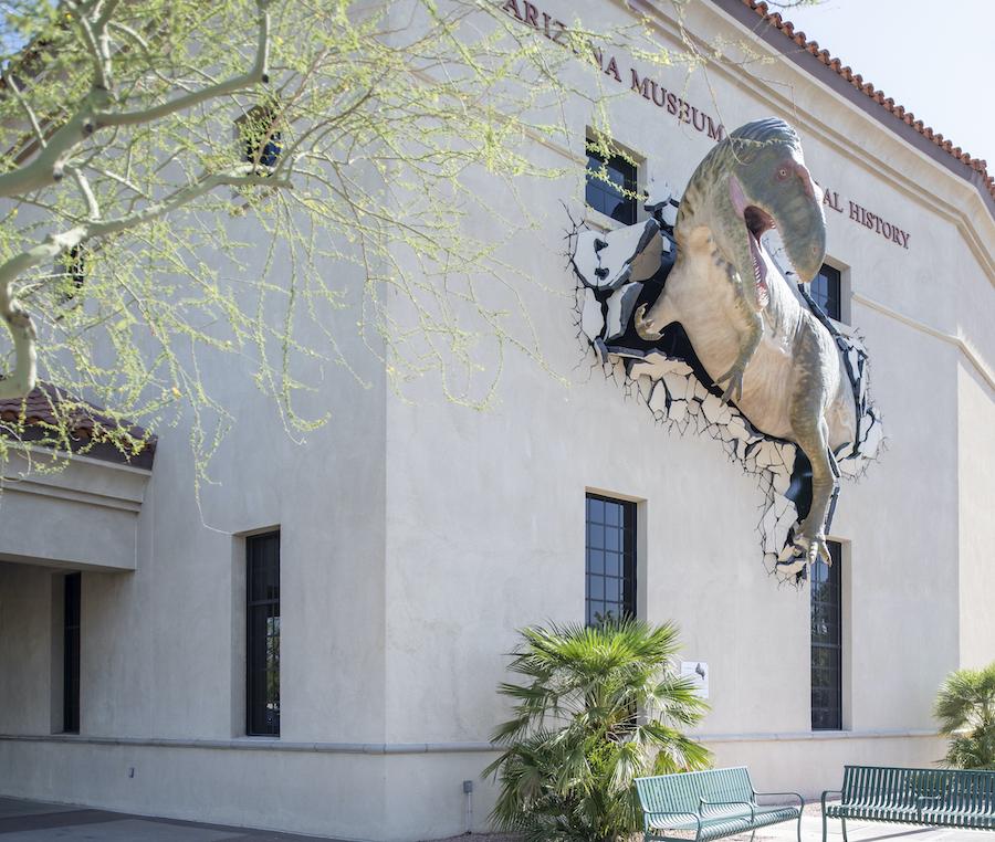 Arizona Museum of Natural History, dinosaur museum, Mesa museums