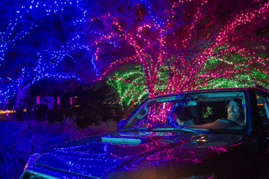 ZooLights, Cruise ZooLights, Phoenix Zoo, holiday lights Phoenix