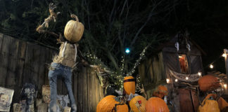 Ray Villafane, pumpkin carving, Strange Encounters Exhibition, Mesa Arts Center