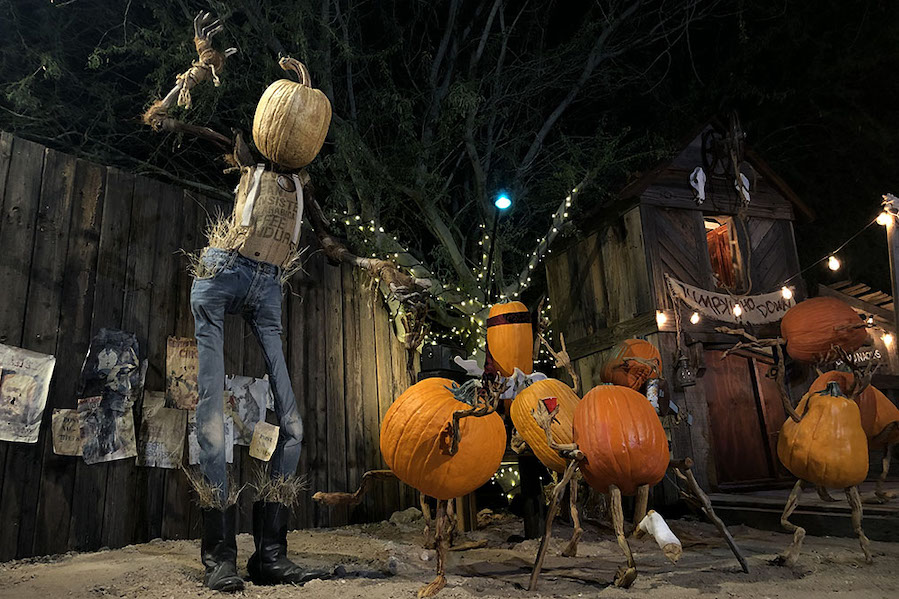 Ray Villafane, pumpkin carving, Strange Encounters Exhibition, Mesa Arts Center