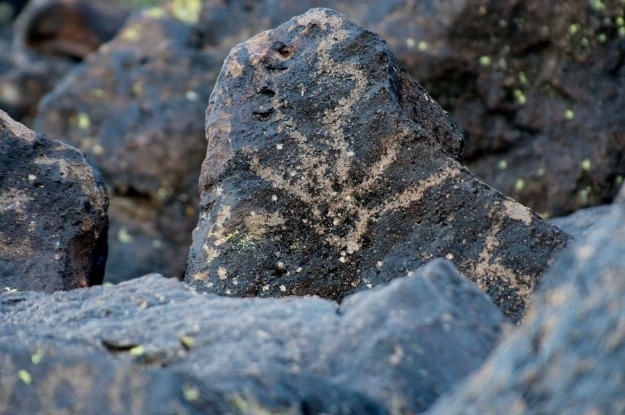 Deer Valley Petroglyph Preserve