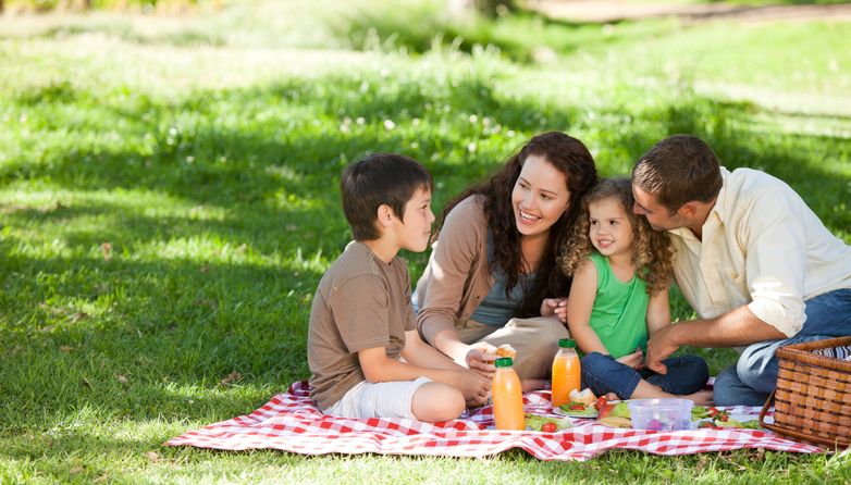 family picnic, family traditions